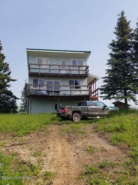 15040 Lobo Lane, Ninilchik, AK 99639 (MLS #20-14228) :: Alaska Realty Experts