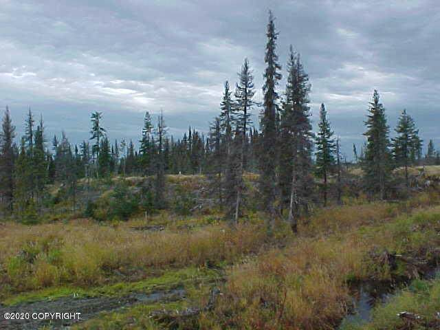 L38 Stacey Street, Homer, AK 99603 (MLS #20-14310) :: Wolf Real Estate Professionals