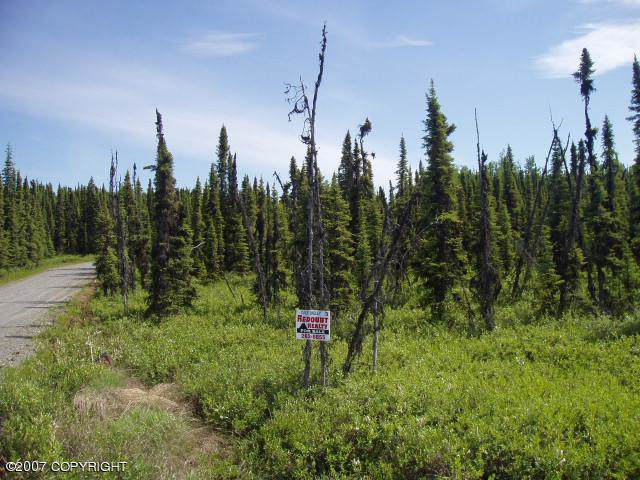 L15 Ridge View Lane, Soldotna, AK 99669 (MLS #20-1439) :: RMG Real Estate Network | Keller Williams Realty Alaska Group