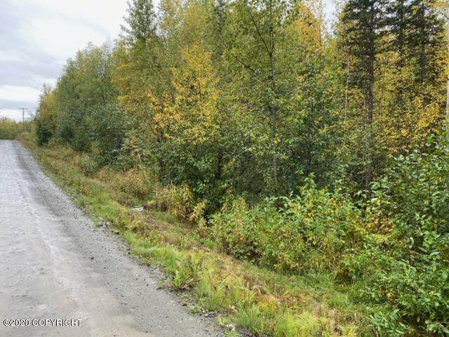 4690 S Viking Road, Wasilla, AK 99623 (MLS #20-14764) :: Wolf Real Estate Professionals
