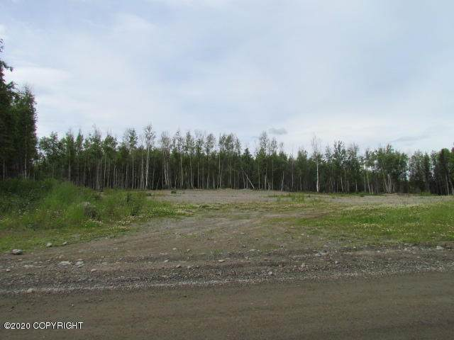 2011 W Lake Lucille Drive, Wasilla, AK 99654 (MLS #20-14944) :: Team Dimmick