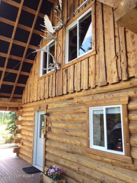 MP 229.50 Parks Highway, Denali National Park, AK 99755 (MLS #20-15050) :: The Adrian Jaime Group | Keller Williams Realty Alaska