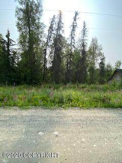 9714 W Trimotor Street, Wasilla, AK 99623 (MLS #20-15927) :: Wolf Real Estate Professionals
