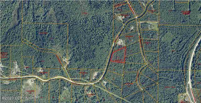L14 B4 Orchid Drive, Salcha, AK 99714 (MLS #20-1622) :: Roy Briley Real Estate Group