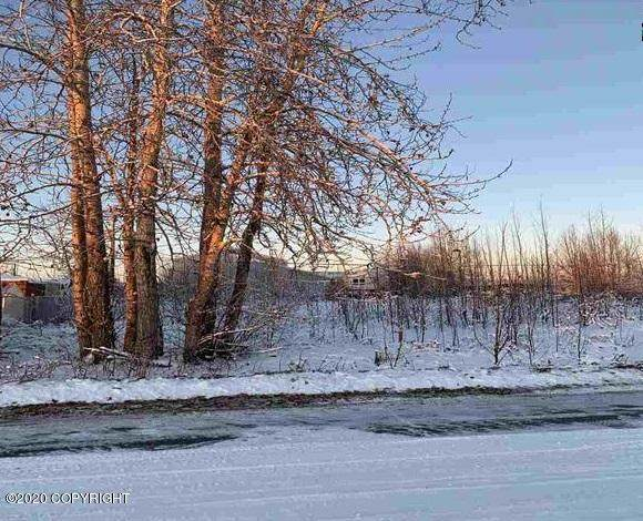 L16 B28 29th Avenue, Fairbanks, AK 99701 (MLS #20-16821) :: RMG Real Estate Network | Keller Williams Realty Alaska Group