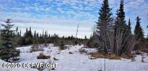 000 King Road, Nikolaevsk, AK 99556 (MLS #20-17139) :: Wolf Real Estate Professionals