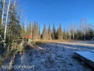 4897 Beaver Loop Road, Kenai, AK 99611 (MLS #20-17261) :: Wolf Real Estate Professionals