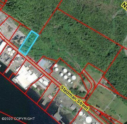 919 Stedman Street, Ketchikan, AK 99901 (MLS #20-1748) :: Roy Briley Real Estate Group