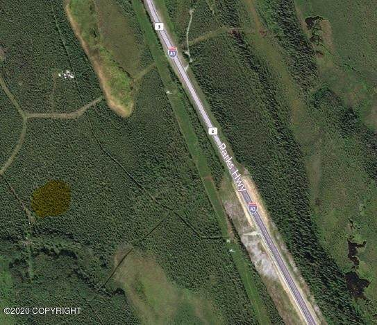000 Johnson Way, Healy, AK 99743 (MLS #20-2028) :: Roy Briley Real Estate Group