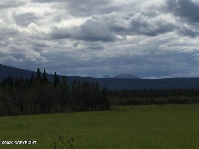 L11 Mi 14 Edgerton Highway, Copper Center, AK 99573 (MLS #20-2048) :: RMG Real Estate Network | Keller Williams Realty Alaska Group