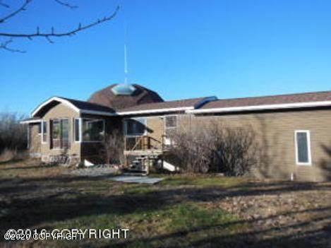 Mi 249.5 Parks Highway, Healy, AK 99743 (MLS #20-2174) :: RMG Real Estate Network | Keller Williams Realty Alaska Group