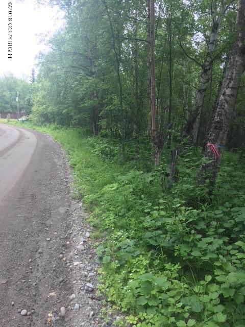350 W Heritage Drive, Wasilla, AK 99654 (MLS #20-2312) :: Team Dimmick