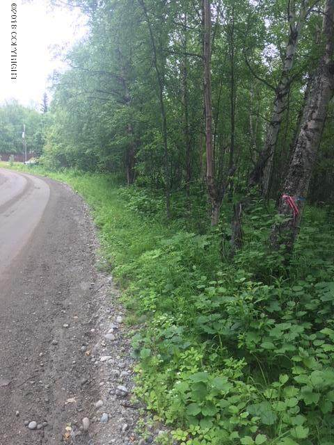 350 W Heritage Drive, Wasilla, AK 99654 (MLS #20-2312) :: RMG Real Estate Network | Keller Williams Realty Alaska Group