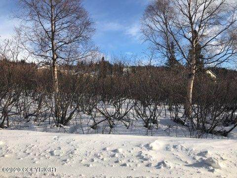 5840 Greece Drive, Anchorage, AK 99516 (MLS #20-2324) :: Wolf Real Estate Professionals