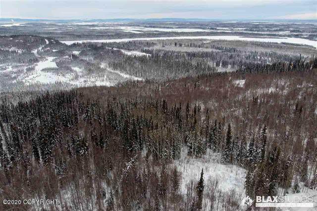 L4 B2 Davendot Lane, Fairbanks, AK 99709 (MLS #20-2455) :: Wolf Real Estate Professionals