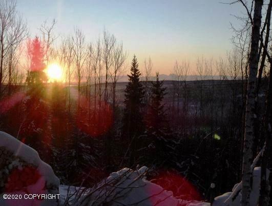 1542 Snowbasin Road, Fairbanks, AK 99709 (MLS #20-2556) :: Wolf Real Estate Professionals