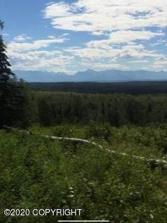 16N Homesteader Road, Wasilla, AK 99654 (MLS #20-2655) :: RMG Real Estate Network | Keller Williams Realty Alaska Group
