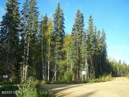 L7 Alyeska Drive, Fairbanks, AK 99709 (MLS #20-2723) :: Wolf Real Estate Professionals