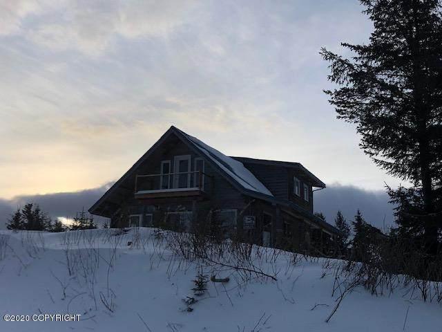 17751 Arcturus Loop, Ninilchik, AK 99639 (MLS #20-2775) :: Wolf Real Estate Professionals