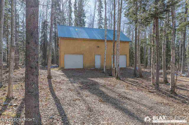 6999 Harebell Avenue, Salcha, AK 99714 (MLS #20-2808) :: Wolf Real Estate Professionals