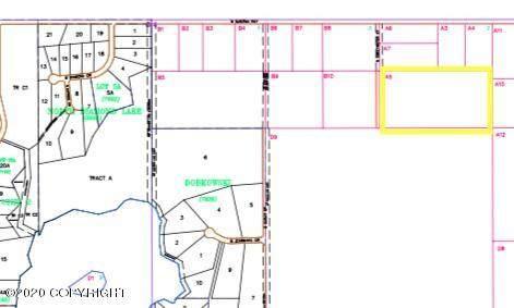 6235 S Sweetwater Street, Big Lake, AK 99652 (MLS #20-2987) :: Roy Briley Real Estate Group