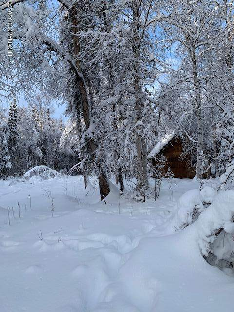 18983 E Secluded Lake Loop, Willow, AK 99688 (MLS #20-3365) :: Wolf Real Estate Professionals