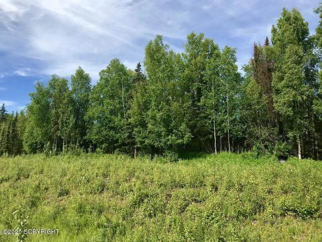 22325 W Parks & 22183 Highway, Willow, AK 99688 (MLS #20-3703) :: RMG Real Estate Network | Keller Williams Realty Alaska Group
