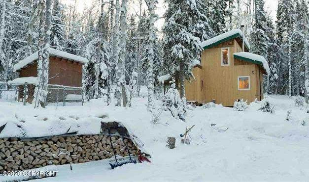 4015 Ray Court, Fairbanks, AK 99709 (MLS #20-4218) :: Wolf Real Estate Professionals