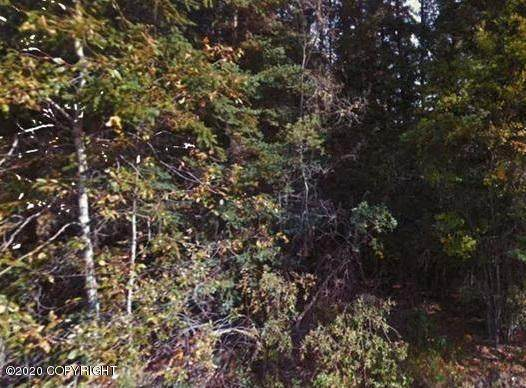 B4 Leigh, Delta Junction, AK 99732 (MLS #20-4246) :: Wolf Real Estate Professionals