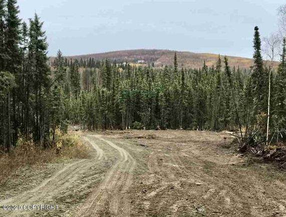 720 Nordale Road, North Pole, AK 99705 (MLS #20-4298) :: Wolf Real Estate Professionals