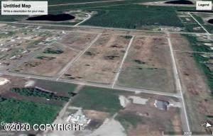 L13 BH Therron Street, North Pole, AK 99705 (MLS #20-6005) :: RMG Real Estate Network | Keller Williams Realty Alaska Group