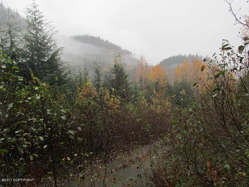 L8 White Beaver Way - Photo 1