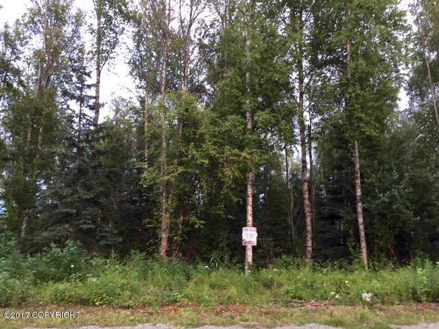 7964 S Frontier Drive, Wasilla, AK 99654 (MLS #20-653) :: Wolf Real Estate Professionals