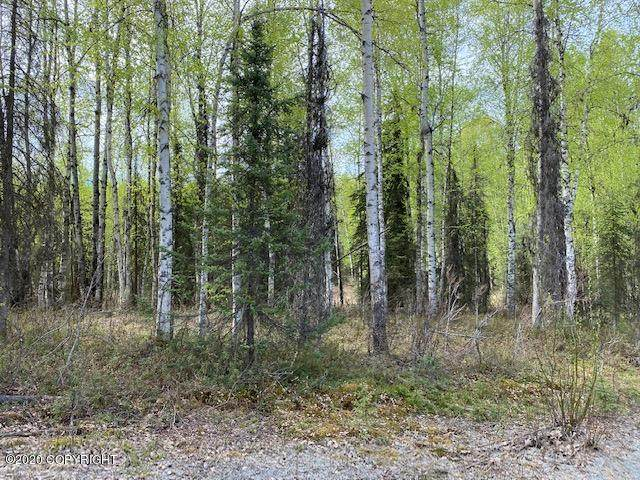 13364 N Willow Lake Drive, Willow, AK 99688 (MLS #20-7352) :: Team Dimmick