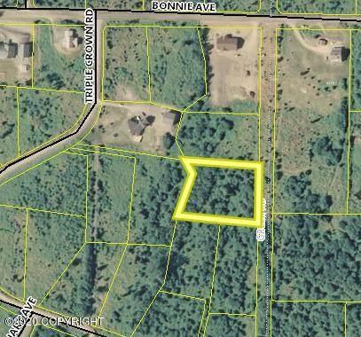 L9 B2 Triple Crown Road, Homer, AK 99603 (MLS #20-8413) :: Wolf Real Estate Professionals