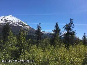 L32 No Road, Moose Pass, AK 99631 (MLS #20-8464) :: Wolf Real Estate Professionals
