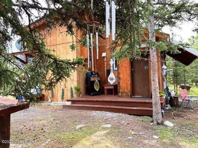 66497 S Keiths Road, Chickaloon, AK 99674 (MLS #20-9427) :: RMG Real Estate Network | Keller Williams Realty Alaska Group