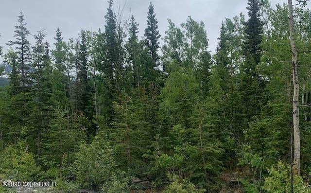 26406 E Little Granite Creek Loop, Sutton, AK 99674 (MLS #20-9615) :: RMG Real Estate Network | Keller Williams Realty Alaska Group