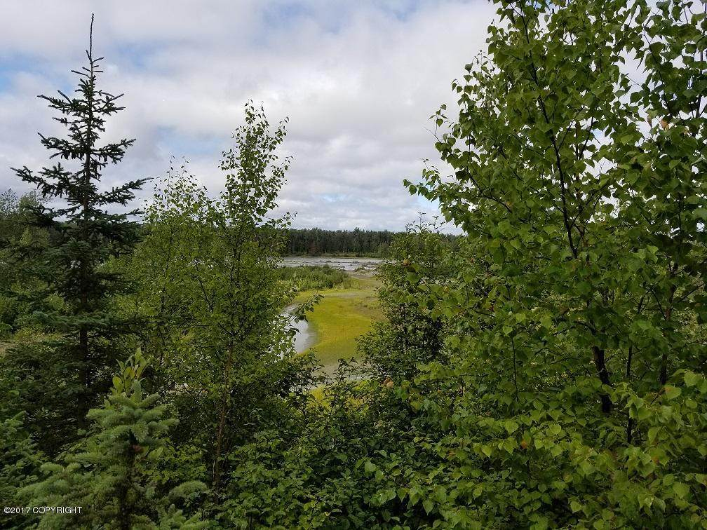 54820 Salmon Run Road - Photo 1