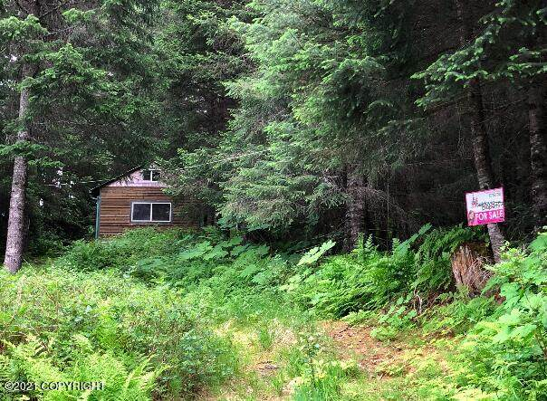 1765 Nutbeem Road, Seldovia, AK 99663 (MLS #21-10419) :: Wolf Real Estate Professionals