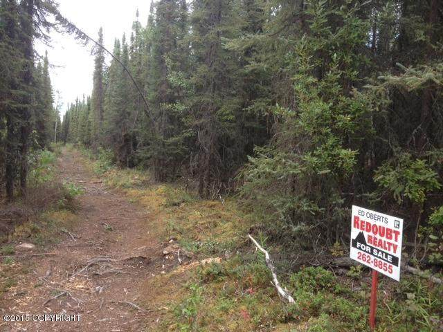 35150 Arms Street, Soldotna, AK 99669 (MLS #21-10875) :: Wolf Real Estate Professionals