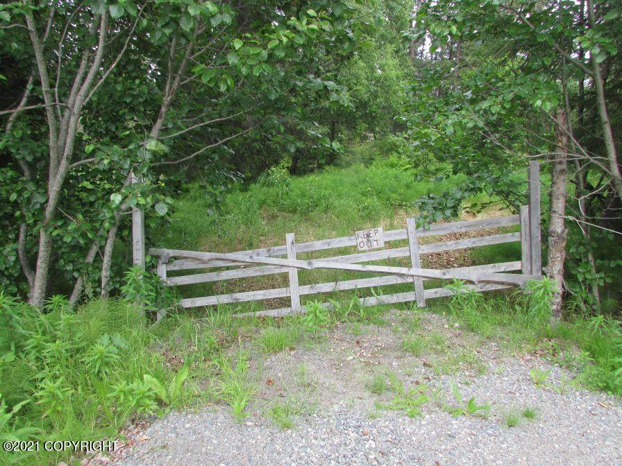 0000 Old Sterling Highway - Photo 1