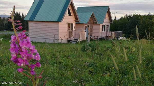 32425 Sterling Highway, Anchor Point, AK 99556 (MLS #21-11670) :: Wolf Real Estate Professionals