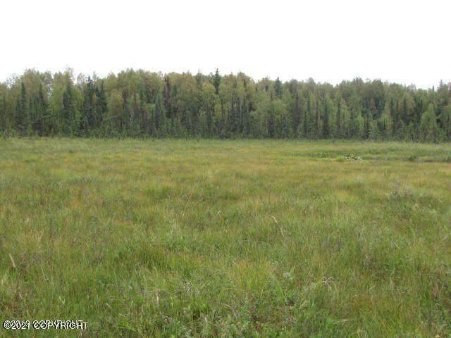 Lot A003 No Road, Willow, AK 99688 (MLS #21-11703) :: RMG Real Estate Network | Keller Williams Realty Alaska Group