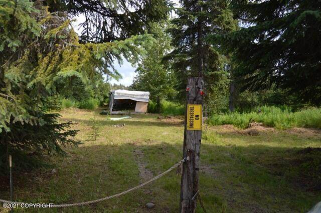 34211 N Fork Road, Anchor Point, AK 99556 (MLS #21-11856) :: Wolf Real Estate Professionals