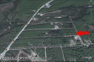 14872 S Clarice Street Street, Wasilla, AK 99654 (MLS #21-12104) :: Daves Alaska Homes