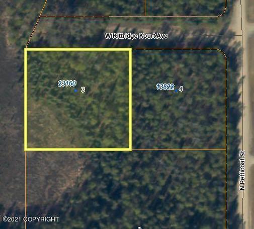 23160 W Kittridge Kourt Avenue, Willow, AK 99688 (MLS #21-12117) :: Wolf Real Estate Professionals