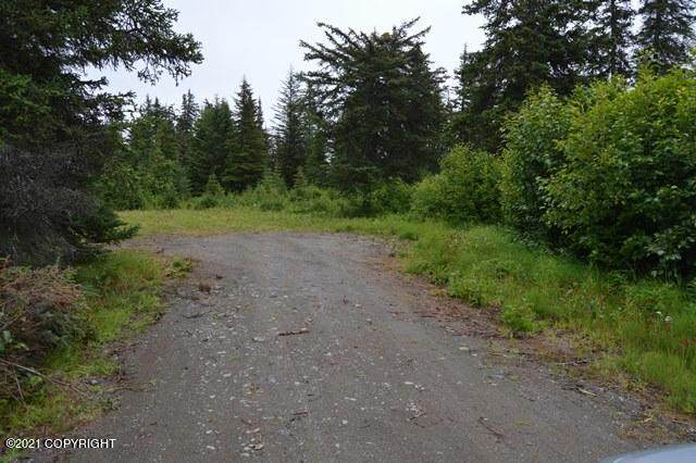 72760 Kingair Avenue, Anchor Point, AK 99556 (MLS #21-12154) :: Wolf Real Estate Professionals