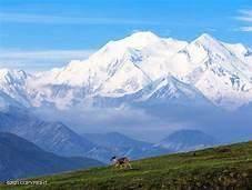 TR Parks Highway, Denali National Park, AK 99744 (MLS #21-1267) :: Wolf Real Estate Professionals