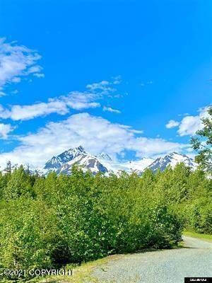 Parcel B Viking Cove Subdivision, Haines, AK 99827 (MLS #21-12858) :: Wolf Real Estate Professionals
